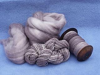 Norfolk fibre 1