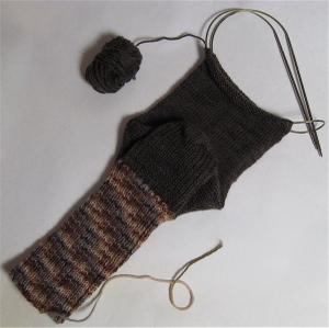 2902_sock1