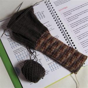 2902_sock2